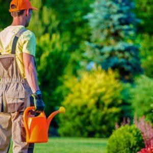 gardener-his-garden-job_1426-1506